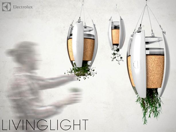 living-light-614