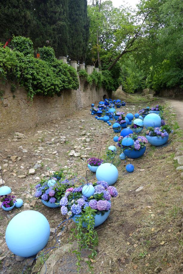 temps-de-flors-blue-spheres-hydrangeas_urbangardensweb