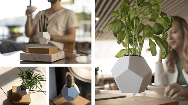 Lyfe_montage_levitating-planter
