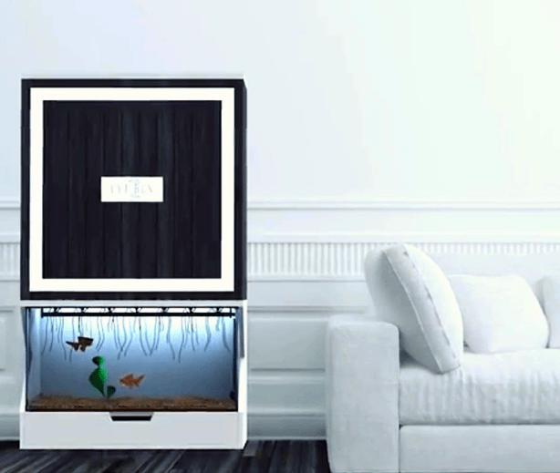 lyfbox_living_room_urbangardensweb