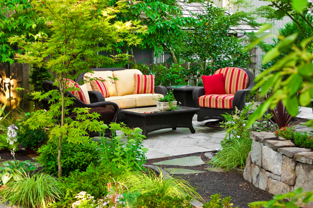 Privacy trees from Garden Goods Direct screen this outdoor room