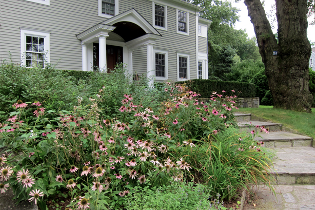 Connecticut-house-and-perennial-garden-makeover-robin-plaskoff-horton-urbangardensweb