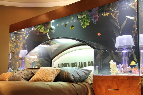 Best Fish Tanks from TV Show Tanked