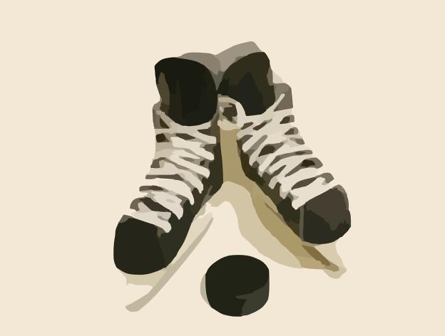 ice-skating-295042_1280
