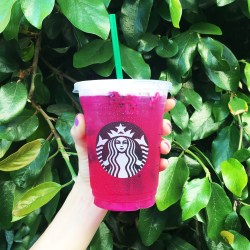 Small Crop Of Starbucks Dragon Drink