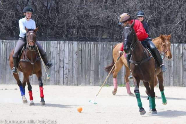 Arena polo at Barrington Hills Polo Club.