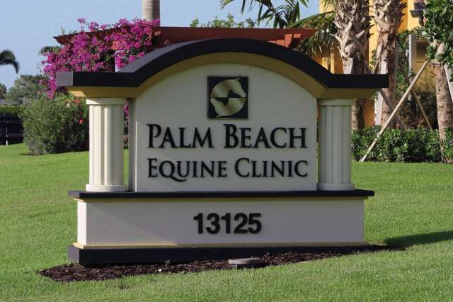Palm Beach Equine