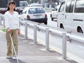 視覚障害者同行援護従業者養成研修