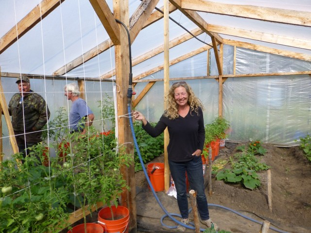 Kate and Andy's greenhouse  August 2014