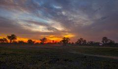 Afrika'nın ruhunu Botswana'da keşfettim 18