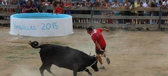 A Torroella de Montgrí, toros i llibertat