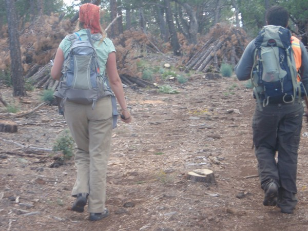 Archaeologists in Tonto Forest Arizona