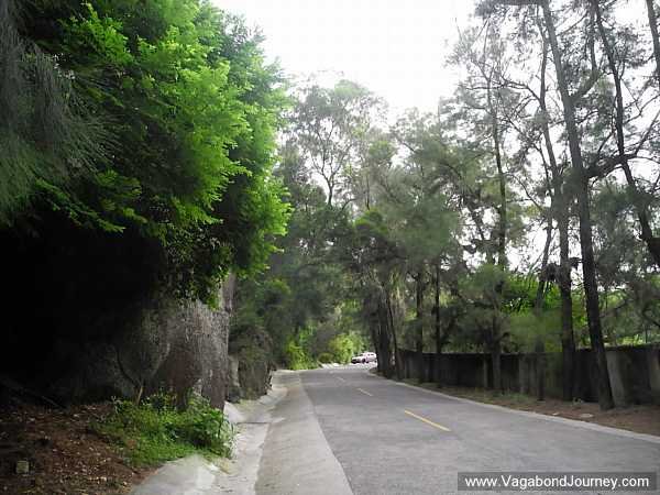 woods-near-xiamen
