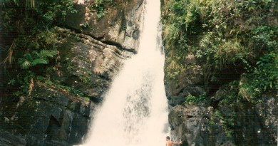 Rainforest waterfall in Puerto Rico