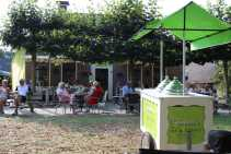 Vakantiehuis Dwingeloo Dorp Dwingeloo (11)-s
