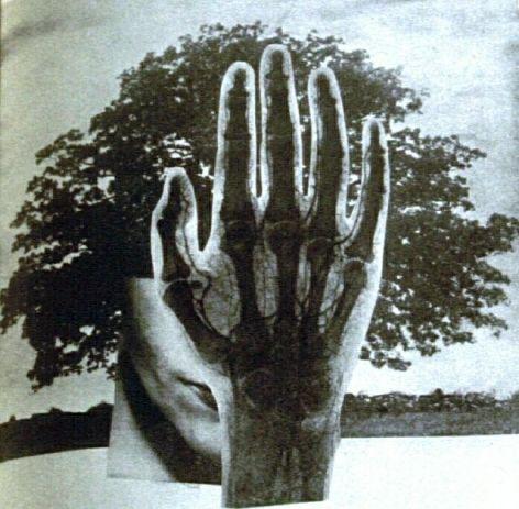 """""""Sólo un árbol"""", montaje por Juan Larrea"""
