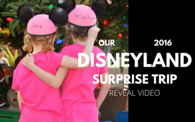 Our Disneyland Surprise Caught on Video