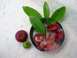 kokum fruit benefits