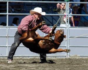 calf-roping-2-med