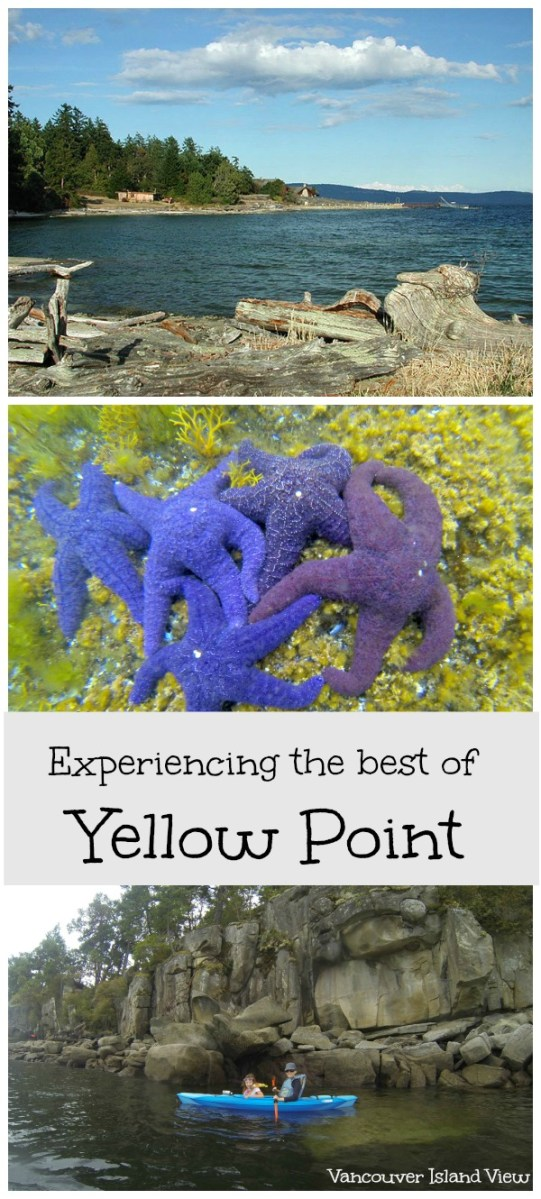 The Best of Yellow Point