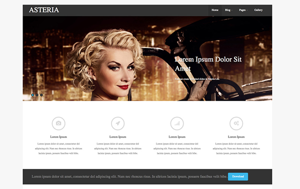 Asteria Free Responsive Photography WordPress Theme