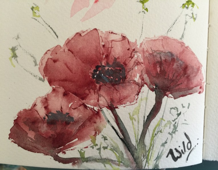 Watercolour Journal - WIld Poppies