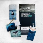 Whale and Dolphin Conservation: Meine Orca Patenschaft