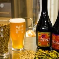 Birra Artigianale in Sardegna: Birre Brumare, a Ghilarza (Oristano)