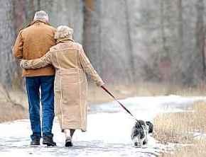 venčení psů pro seniory