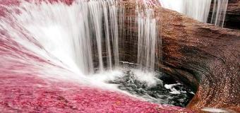 Caño Cristales, el río de los cinco colores