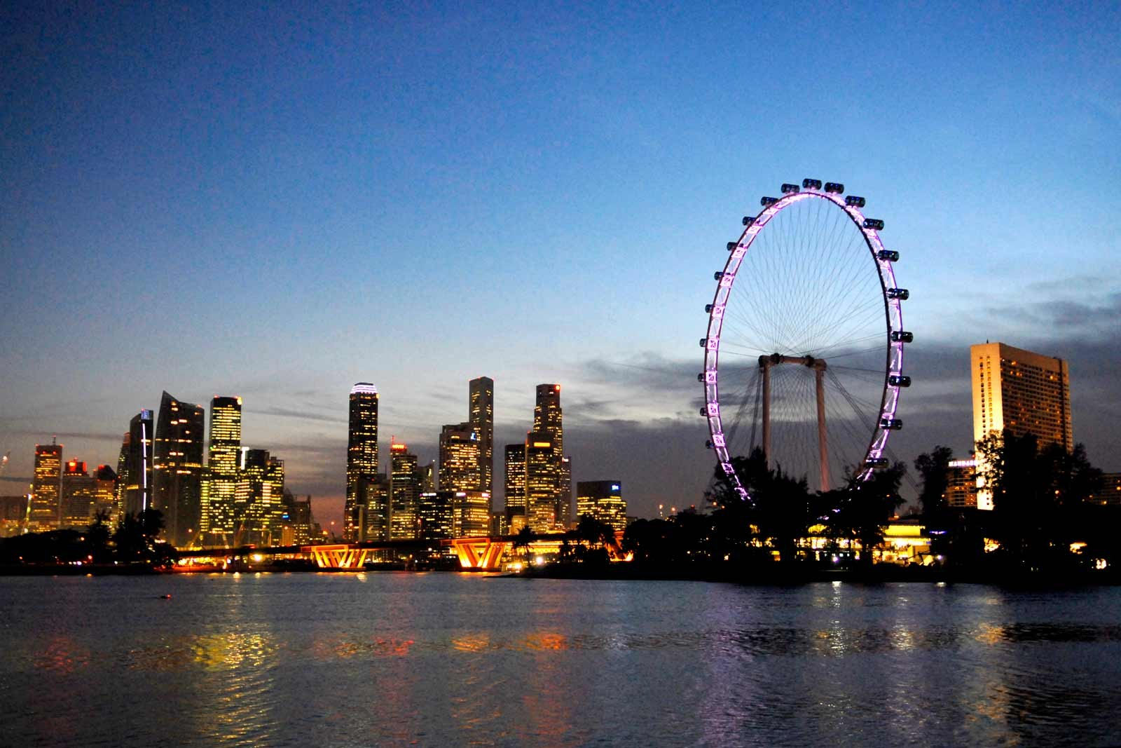 The Singapore Flyer & Skyline