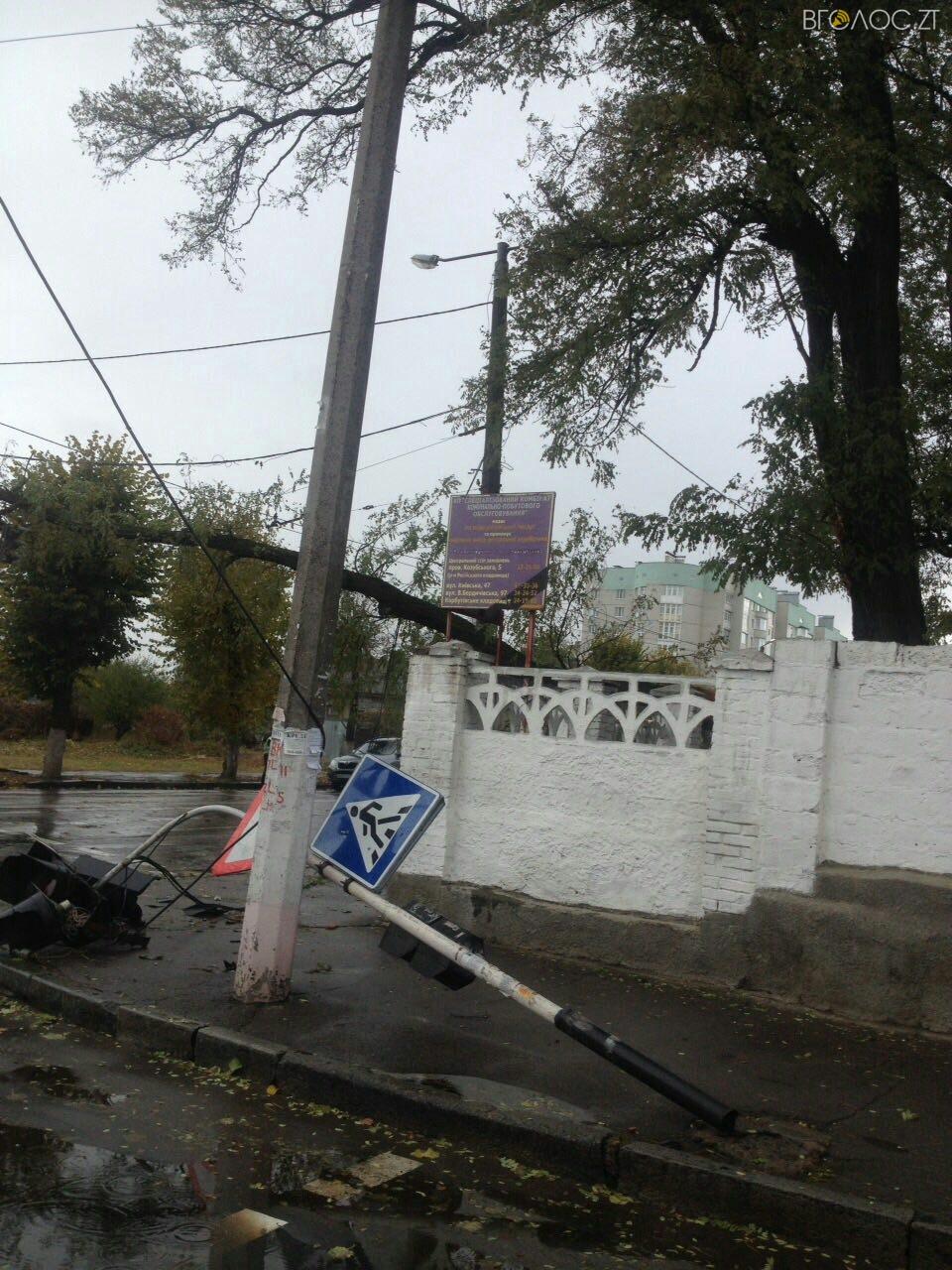 В Житомире дерево упало на дорогу и повалило светофор 7