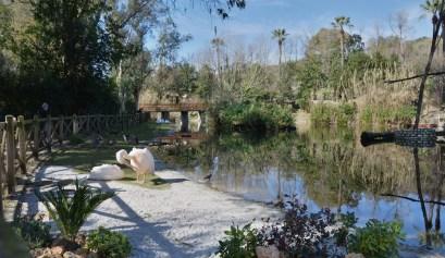 zoo di napoli (6)