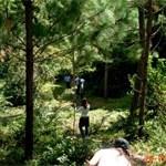Ecoturismo – Conociendo El Parque Nacional Nalga de Maco