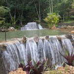 Paraíso Caño Hondo: El Tesoro Escondido De La Isla