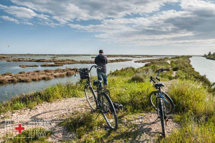 bicicletes deltebre