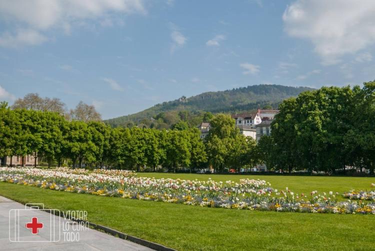 Selva Negra Baden Baden