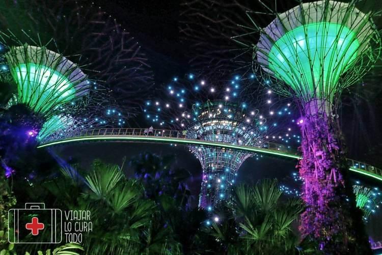 skytrees Singapore