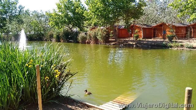 Laguna central del Camping Eucaliptus de Amposta