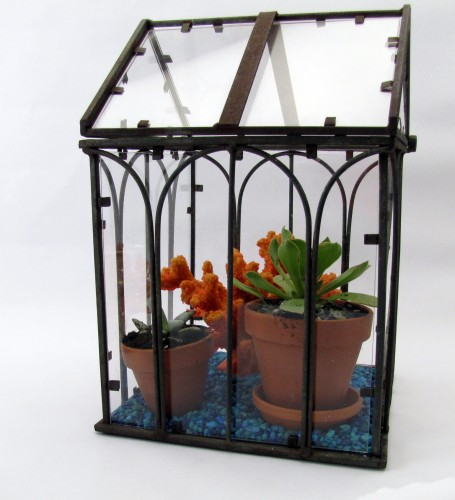 Thrifting Thursday- Tabletop Greenhouse