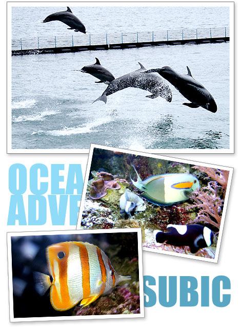 Ocean Adventure, Subic Bay Freeport, Zambales