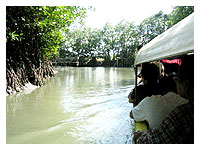 banca passing through canals