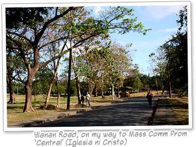 Ylanan Road, University of the Philippines Diliman