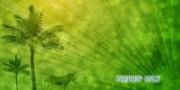 Palm Sunday Animated Motion Background