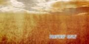 Grunge Wheat Field: Autumn Worship Motion Background