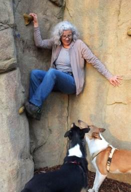 Foto Ulla Viering und Hunde an der Kletterwand