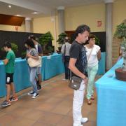 La Casa dels Mundina obri una mostra pel 30 aniversari de La Plana Amics del Bonsai