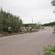 SPV neteja i condiciona les cunetes, barrancs, camins rurals i solars municipals del terme