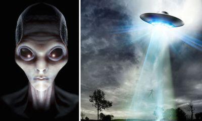 alien-abduction-845339