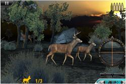 High Calibre Deer